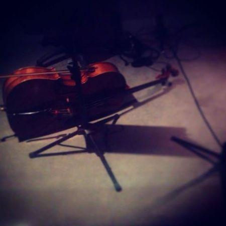 Cello Day!